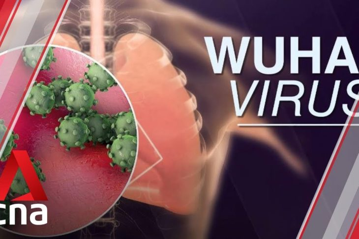 Singapore confirms first case of Wuhan virus – YouTube