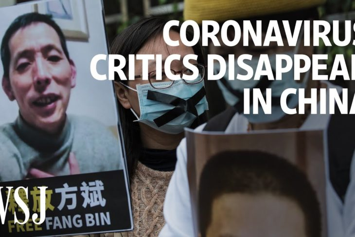 Coronavirus Critics Disappear in China | WSJ