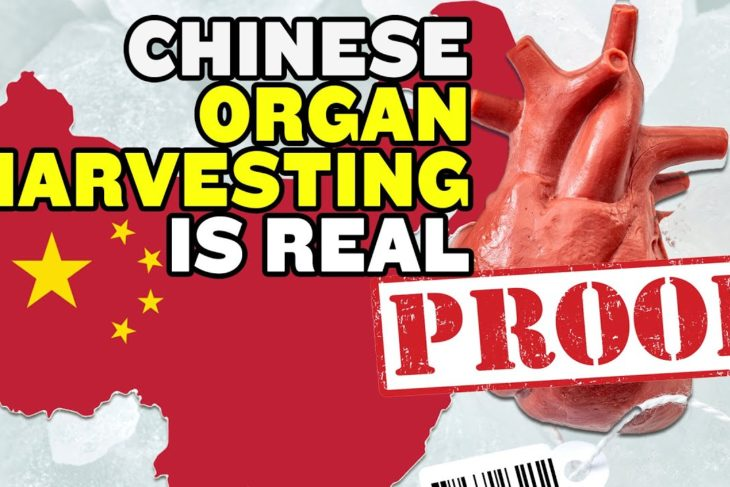 6 Things That Show China's Organ Harvesting Is Real